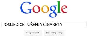 google-search1-300x125